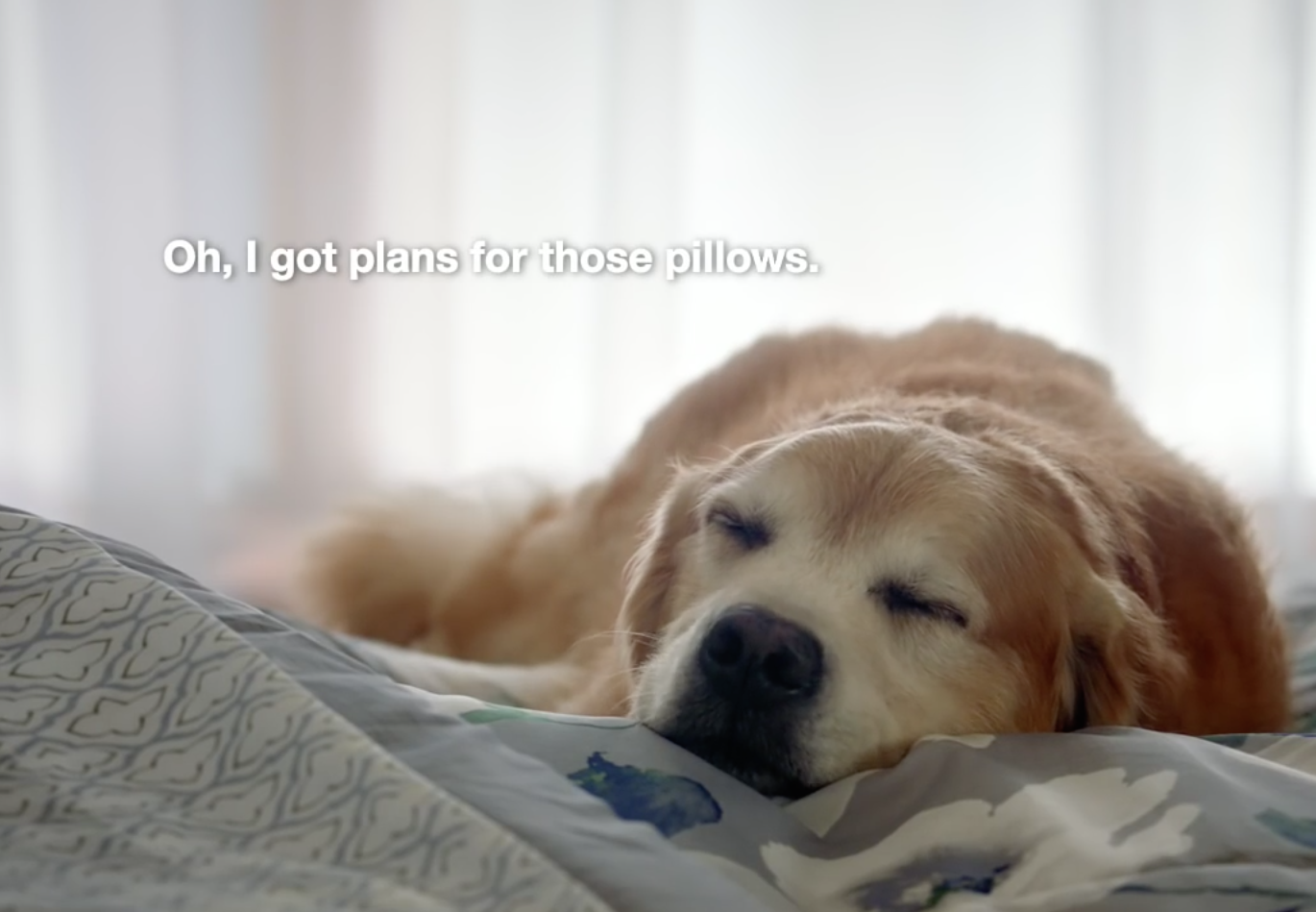Havas Chicago Promotes Its First Series of Ads for Kmart | AgencySpy
