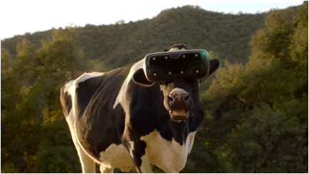 cows enjoy vr in mccann new york�s first work for chick