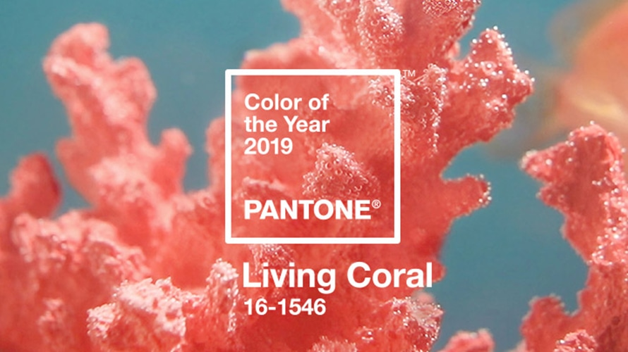 Living Coral Is Pantone's 2019 Color of the Year – Adweek