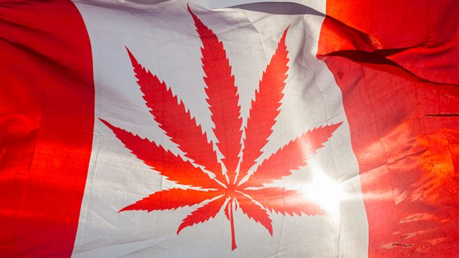 The Canadian flag is altered to show the marijuana flower in the middle of it