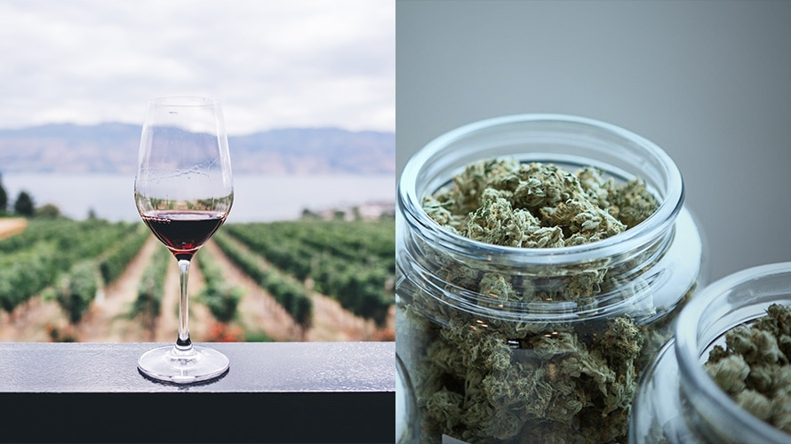 Side-by-side images of a glass of red wine in front of a winery and a glass jar of cannabis