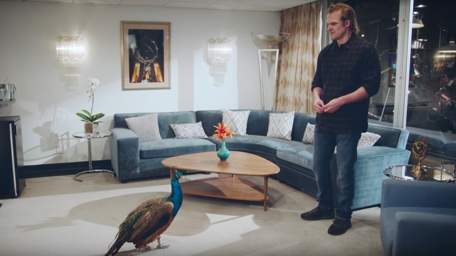 stranger things star david harbour faces off against the NBC peacock in his dressing room