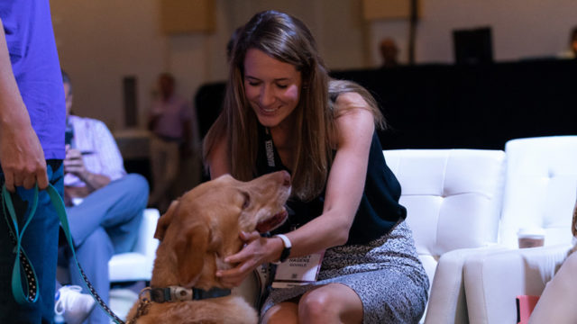 The Dream Team granted a four-legged wish at Brandweek.