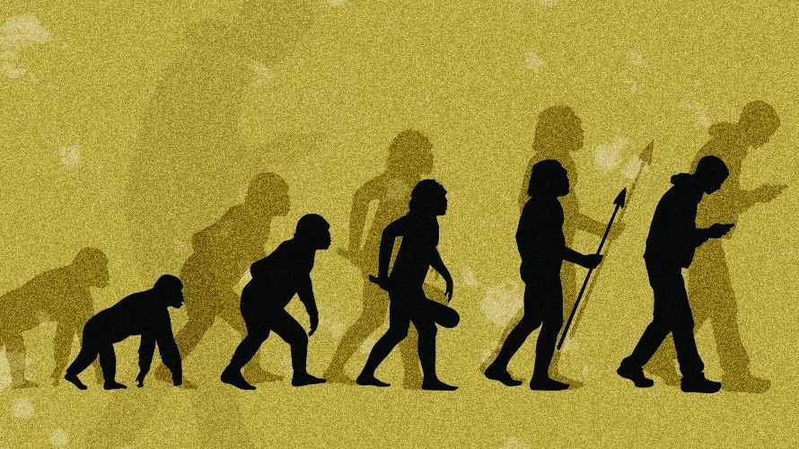 evolution of an ape turning into a person texting