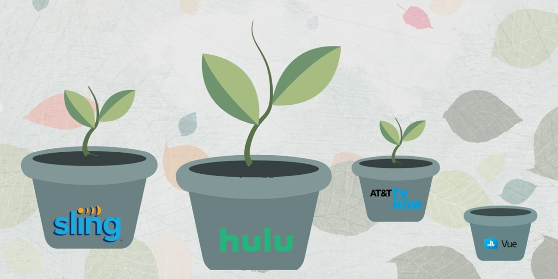 potted plants with the pots labeled hulu, sling and other telecom services