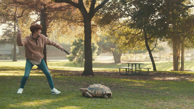 A woman trying to play fetch with a tortoise