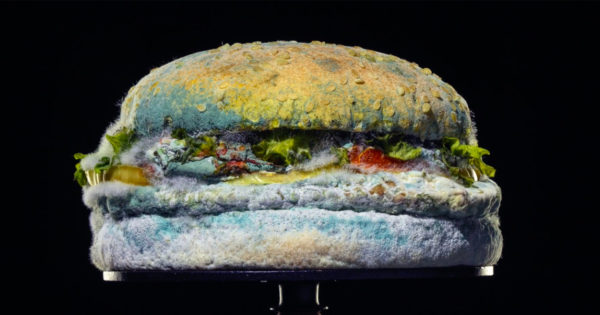 Why Burger King Is Proudly Advertising a Moldy Whopper