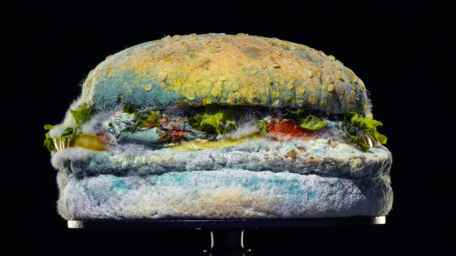 A Whopper is covered in mold in a new Burger King ad