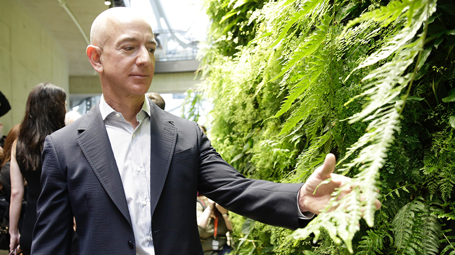 Jeff Bezos touching a tree