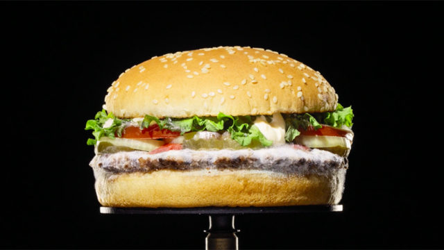 3 Years, 3 Agencies: The Weird Road to Burger King's Moldy Whopper