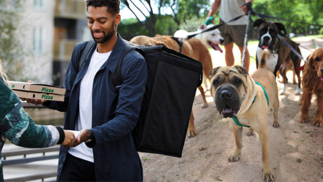 delivery person and dog