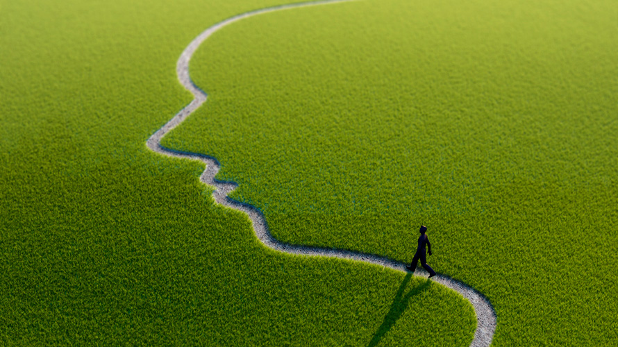 a face drawn into the grass as a path with a person walking across it