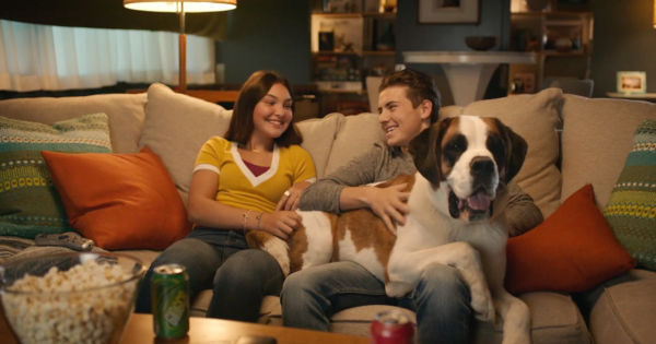 PetSmart Names Deutsch LA Its Agency of Record