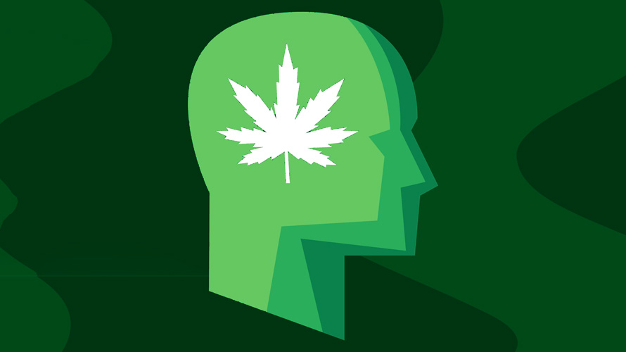 Illustration of a head with a cannabis leaf on it
