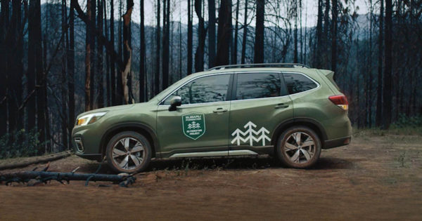 Subaru's Forester Will Be Used to Reforest the West Coast