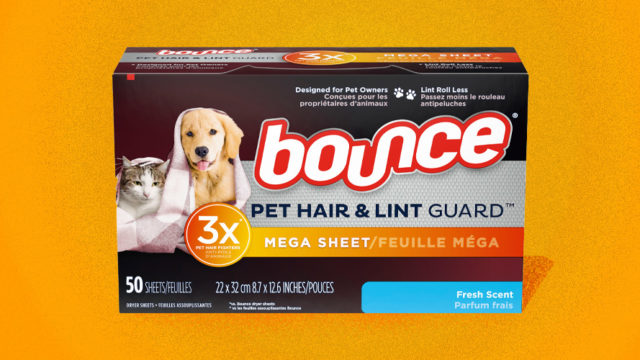 The Catering to Pet Owners Continues: Bounce Debuts Dryer Sheets for Pet Hair