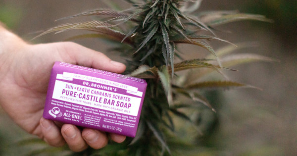 This Dr. Bronner's $25 Soap Smells Like Cannabis and Has a Message, Too