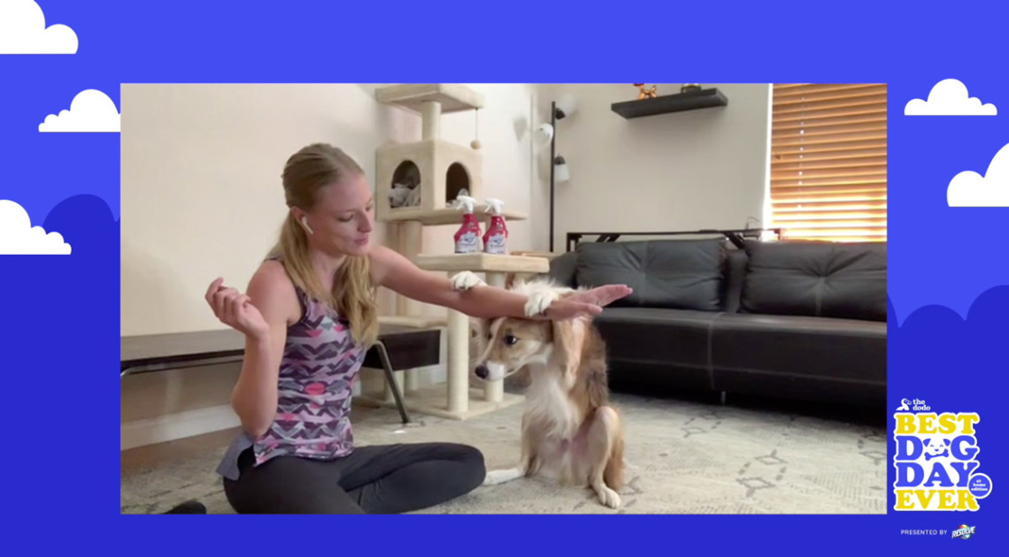 Screenshot of trainer Sara Carson and a dog