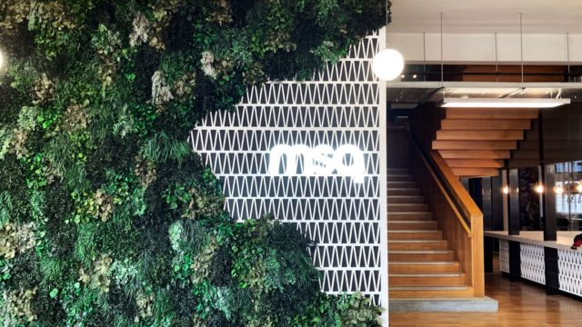 MSQ's office headquarters, with greenery outside and a wooden staircase inside