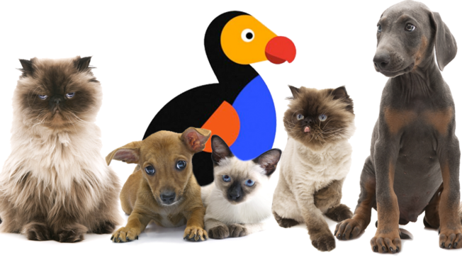 The Dodo with cats and dogs
