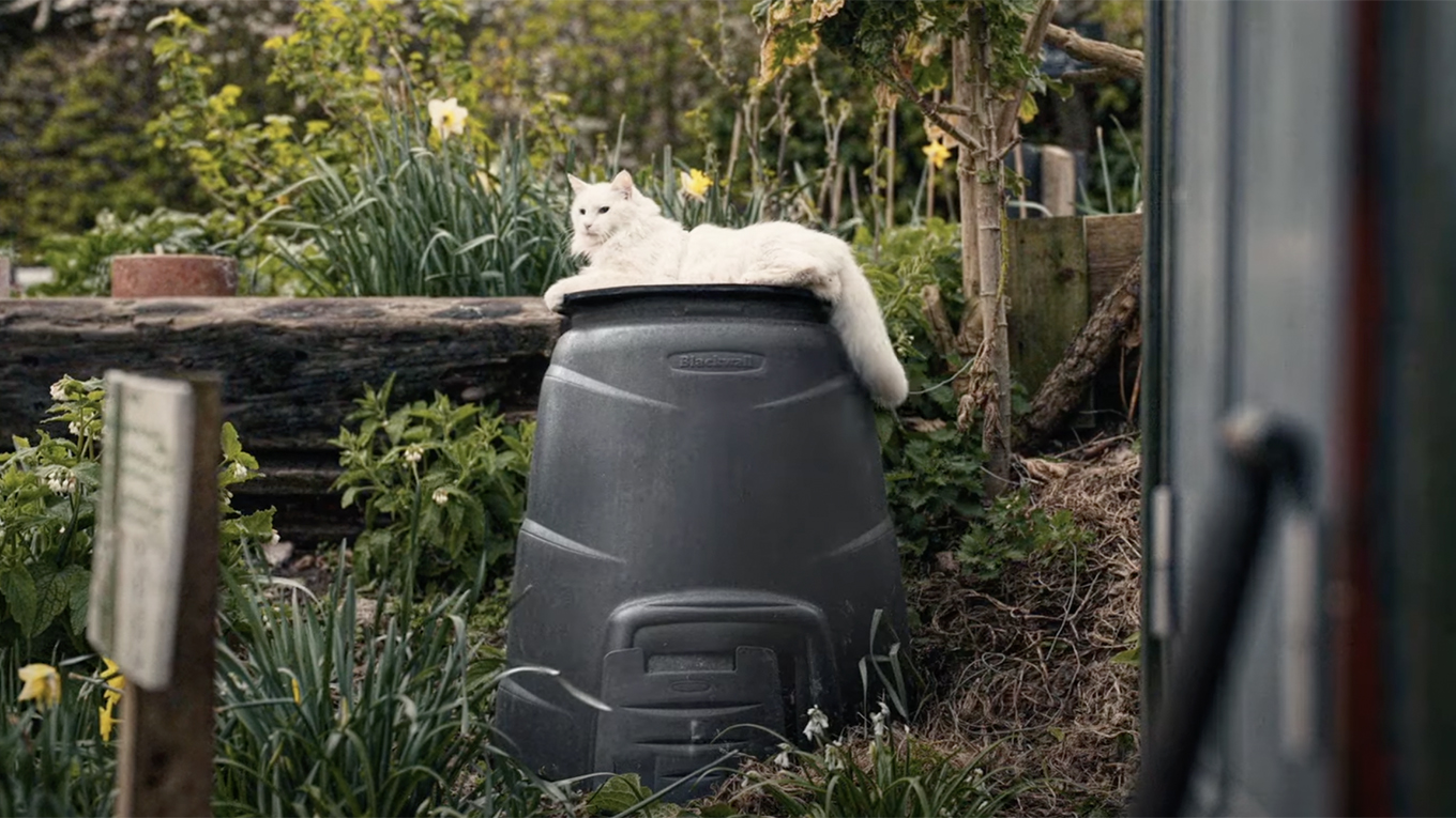 A white cat sits on a black trash bin, looking somewhat like a pint of Guinness