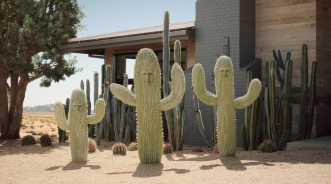 A family of cacti in front of a house