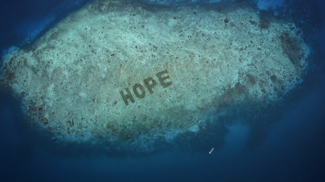 Image of coral reef grown to spell out the word