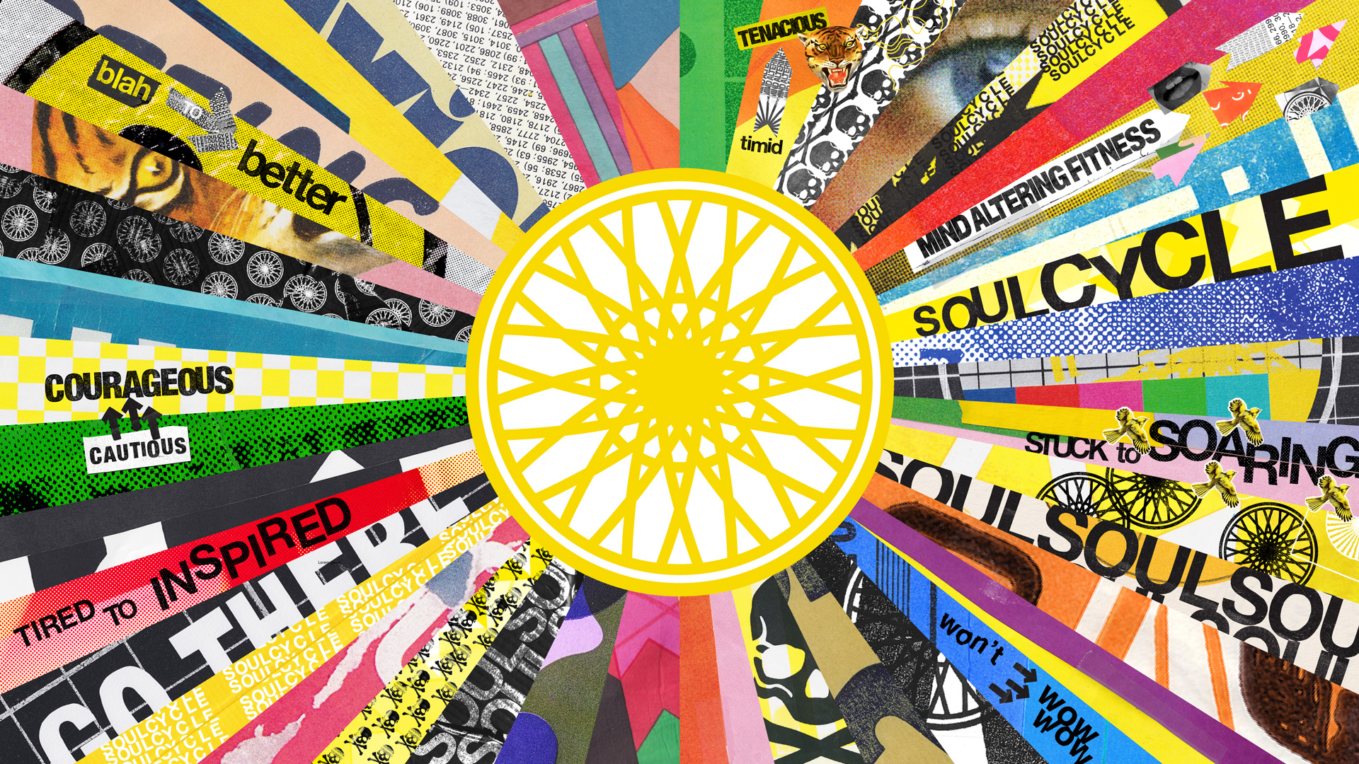 An illustration of SoulCycle's 'Brain Wheel'