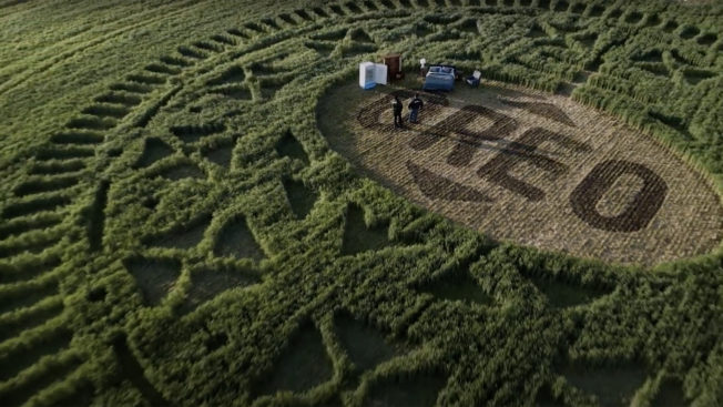 The shape of an Oreo is carved into a crop circle and seen from above