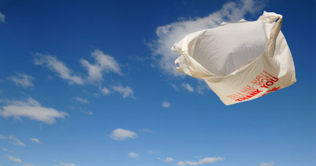 A plastic bag floating in the breeze