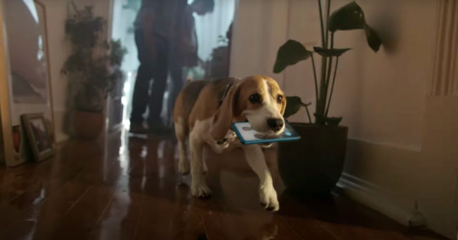 A dog takes off with a phone in this campaign to repair broken phones
