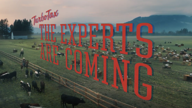 Turbotax ad with text that reads The Experts are Coming