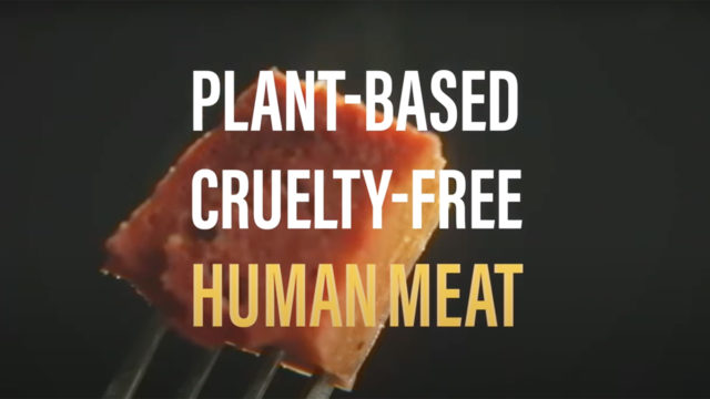 A square cut of meat-like food on a fork is covered by the words Plant-based cruelty-free human meat