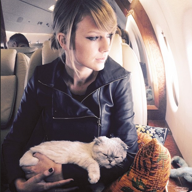Taylor Swift S Cat Reenacted A Super Bowl Interception And Blew Up Instagram